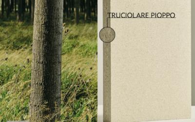 I pannelli truciolari Pioppo Lombardo